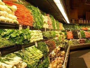 Balancing a vegetarian diet
