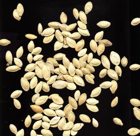 Pumpkin seeds are very high in zinc
