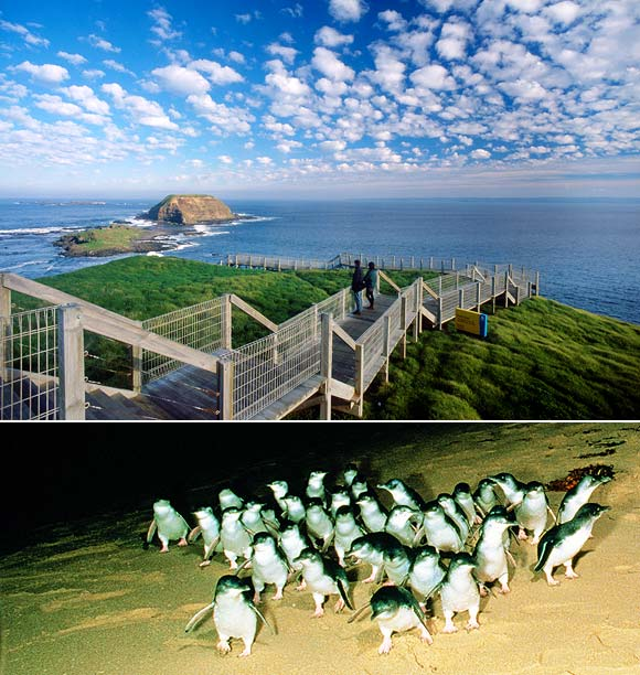 IN PICS: 18 AMAZING travel destinations in Australia