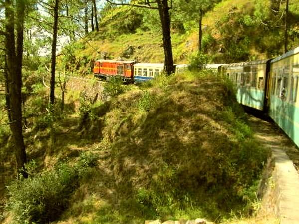 Shimla
