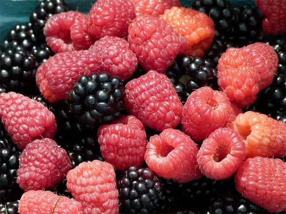 Top 12 foods that help FIGHT cancer