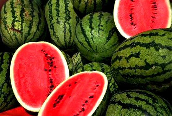 Watermelon