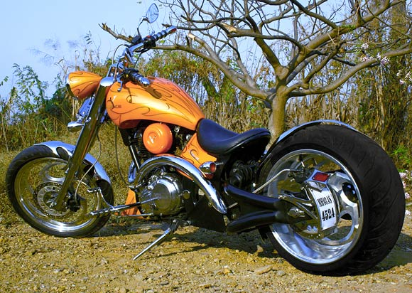 Bikes In India Orange Angel