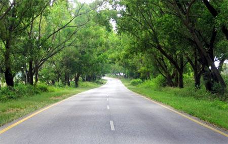 Hassan-Belur/Halebid Highway.