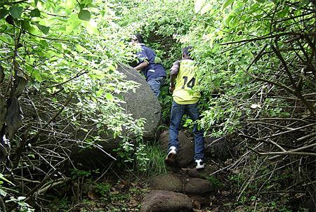 Trekking in Yelagiri