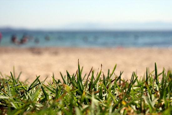 Nia Makri Beach, Athens