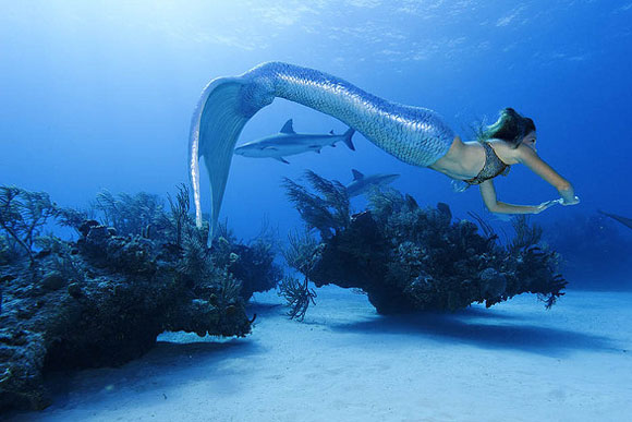 STUNNING PICS: The swimmer who's a full-time mermaid