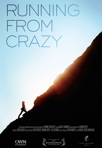 Poster of Running From Crazy