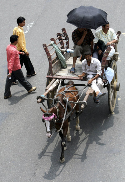 A horse-driven carriage seen in Jammu as commuters resorted to traditional modes in the face of a transport strike in Jammu in 2008.
