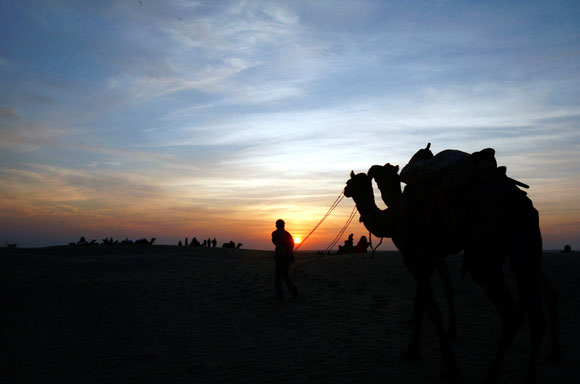 Camels are silhouetted against the setting sun over the Thar Desert at Jaisalmer