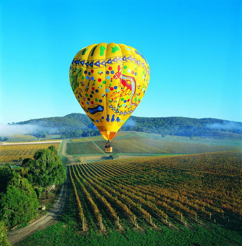 Hot-air balloon over vineyards