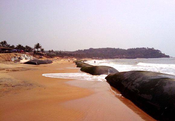 Candolim Beach, Bardez, Goa