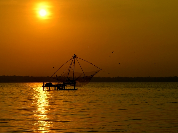Kerala's famous Chinese fishing nets in Ashtamudi Backwaters, Kerala