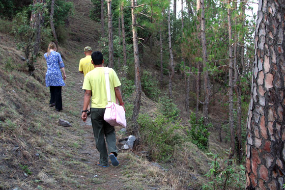 Gentle trek through the forest around Kalmatia Sangam.