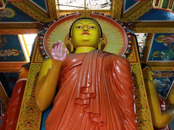 IN PICS: The amazing Sri Lanka