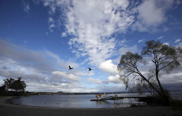Birds fly over a float plane on the shores of Lake Taupo, known for its natural scenic beauty and outdoor activities.