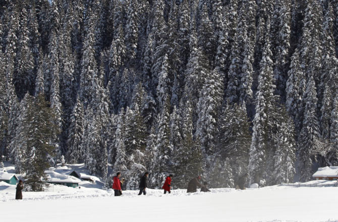 Tourists walk past snow-covered trees in Gulmarg