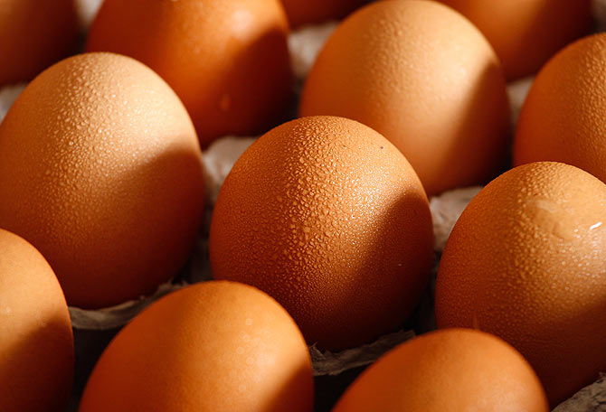 Eggs are one of the best sources of protiens