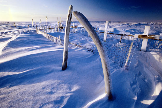 An Inupiat cemetery in Kaktovik, Alaska, marked by bowhead whale jawbones -- a sign of the relationship the Inupiats have with the whale.