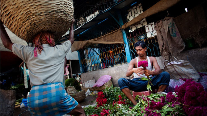 A typical day at a flower market near Kolkata -- the load they have to carry to survive and feed their family is too excessive.