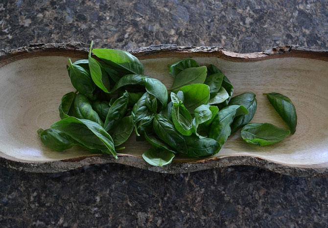 Basil is regarded as an 'anti-stress' agent