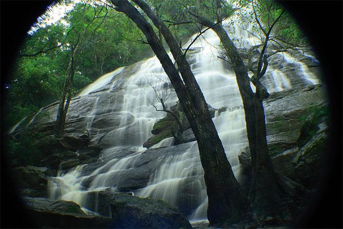 Kiliyur Falls, Yercaud
