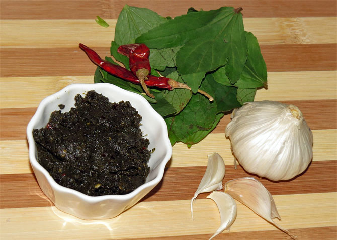 28 states: How to make Andhra special Gongura Pachadi
