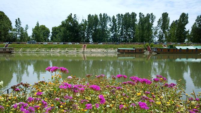 Jhelum River, Srinagar