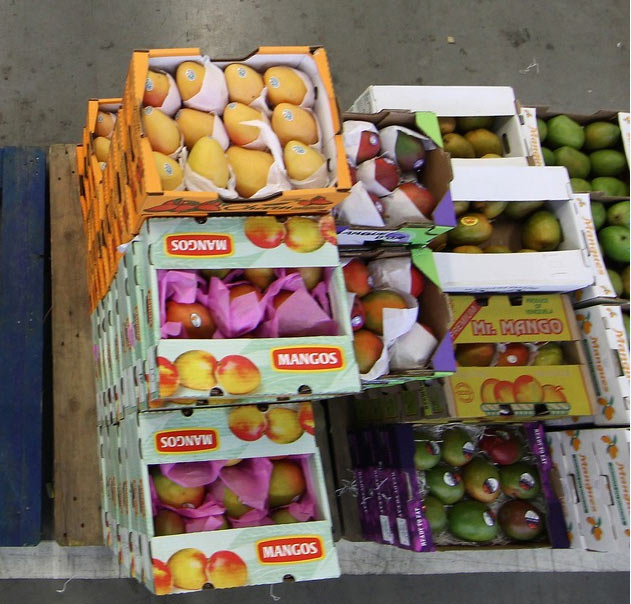 5. Your luggage includes (many) boxes of mangoes