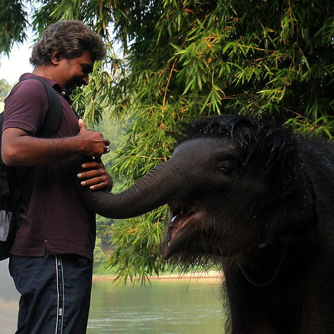 Anand Shinde discovered he could speak with elephants