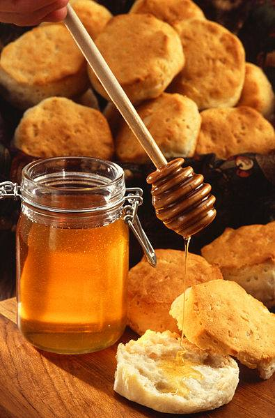 Honey is an excellent medicine for irritant coughs.