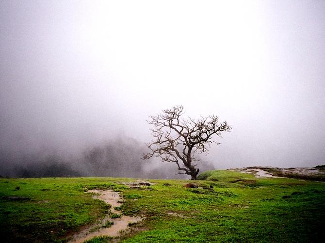 Malshej, Maharashtra