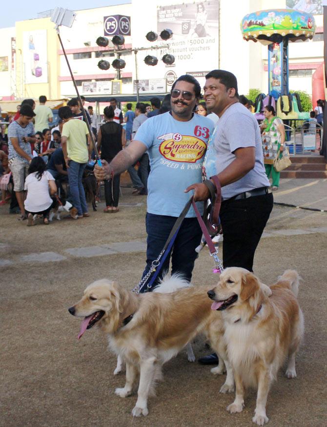 Dog Carnival