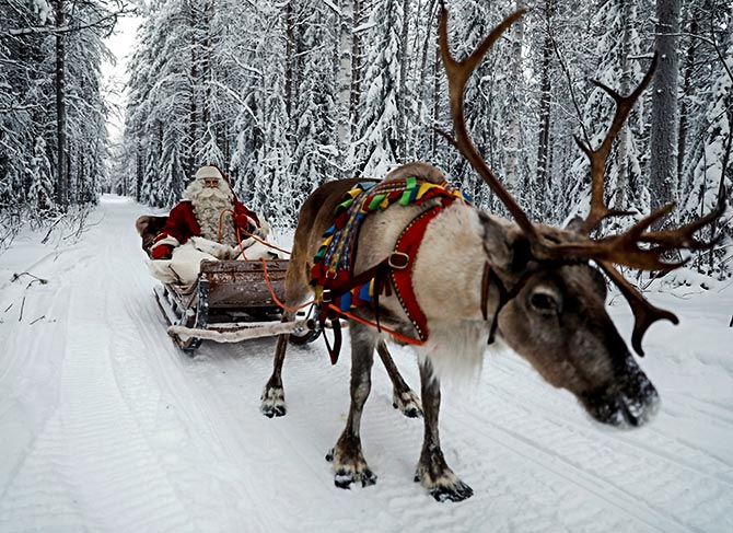 Latest News from India - Get Ahead - Careers, Health and Fitness, Personal Finance Headlines - Reindeer at work: It's Christmas after all