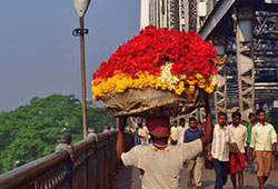 Latest News from India - Get Ahead - Careers, Health and Fitness, Personal Finance Headlines - Travelling down memory lane in Kolkata