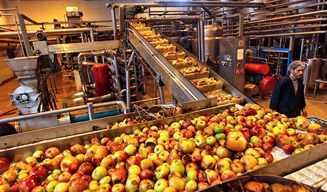 An apple juice manufacturing unit on the outskirts of Srinagar, October 15, 2012. Photograph: Danish Ismail/Reuters