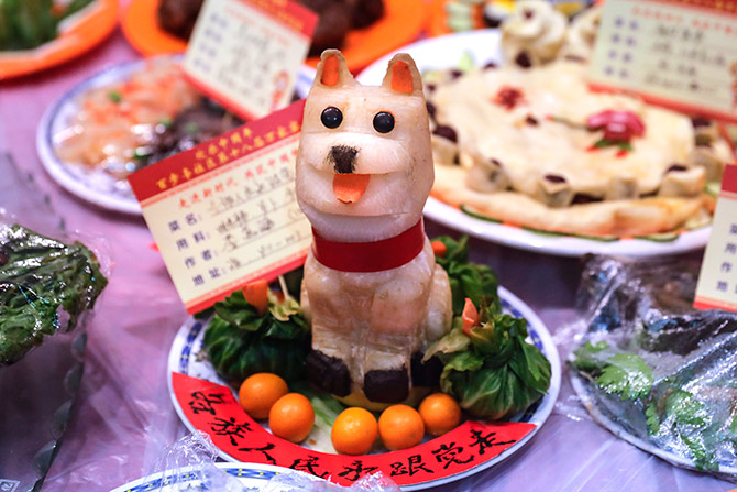 Latest News from India - Get Ahead - Careers, Health and Fitness, Personal Finance Headlines - Pix: It's the Chinese Year of the Dog