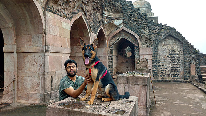 Must read! A 16-month-old German shepherd's letter | Top