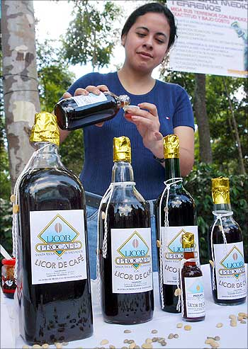 A Salvadoran coffee farmer sells samples of coffee liqueur during a coffee festival in Santa Ana, 56 km from San Salvador.