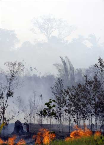 The Amazon forest, suffering from seasonal drought, burns next to the city of Careiro da Varzea.