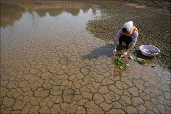 A Chinese woman washes vegetables at a dried-out pond that is partially filled by new rainfall on the outskirts of Yingtan, Jiangxi province, China.