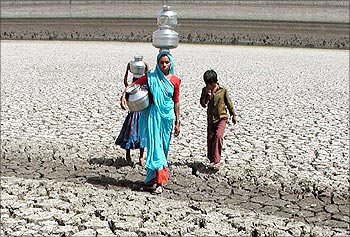 A woman walks through a parched field to collect water in Rajkot.