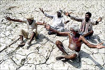 Farmers pray for rain as they sit on a dry paddy farm in Allahabad in Uttar Pradesh.