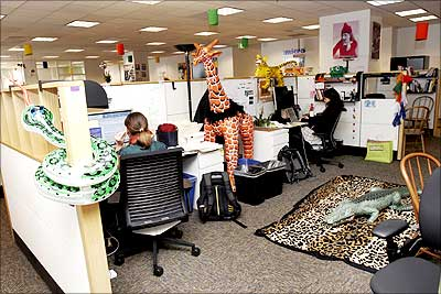 The safari-themed Google office in San Francisco.