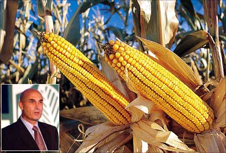 Monsanto offer high yield seeds, Hugh Grant (inset)