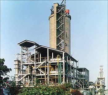 DCM plant