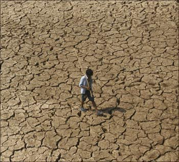 Lack of rains have wreaked havoc in India and many fertile areas have become parched like this field