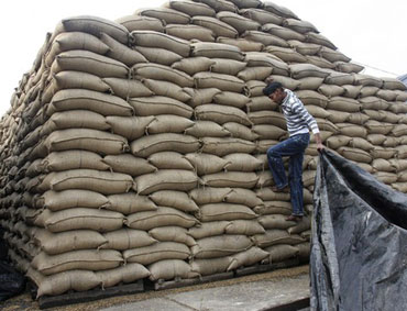 Despite storage shortages, FCI sticks to rice buy target