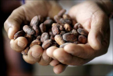 Murli Kewalram Chanrai has a major cocoa business.