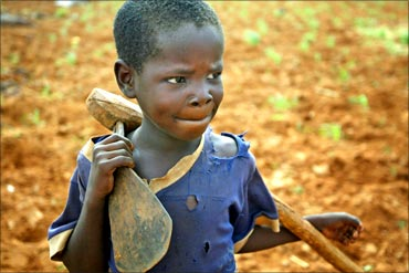A young boy takes a break from tilling a field